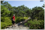 Ridge Walk on Sauveur Trail