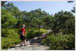 Ridge Walk on Sauveur Trail