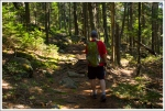 Sauveur Trail in the Woods