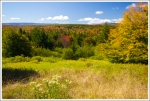 Fall Color in Dolly Sods