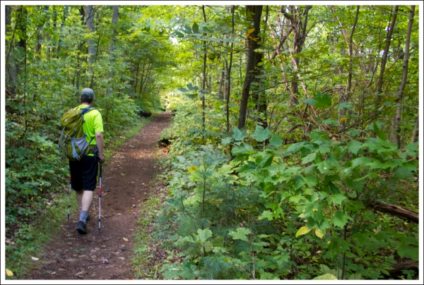 Adam Walks the Trail Toward Mathews Arm
