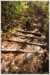 Log Stairs Climbing Down Rough Ridge