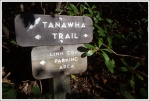 Tanawha Trail