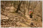 Shenandoah Mountain Trail Cairn