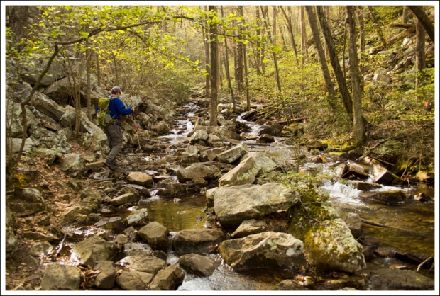 Walking in the Streambed