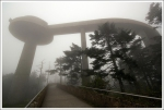 Clingmans Dome Observation Tower in the Fog