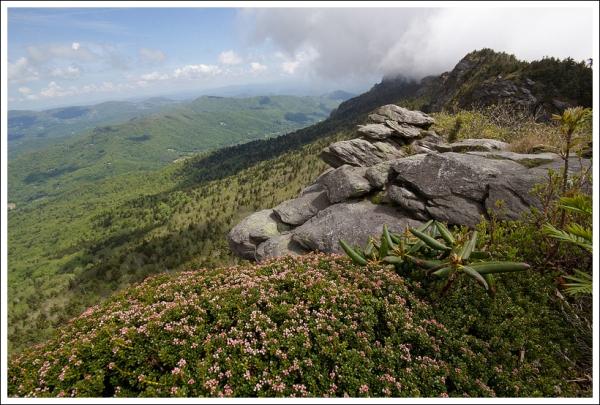 Attic Window Peak View