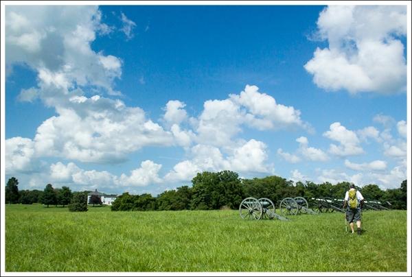 Cannons on Murphy Farm