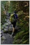 Climbing Gorge Brook
