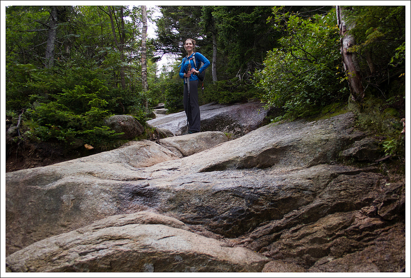 Franconia Ridge Nh Virginia Trail Guide