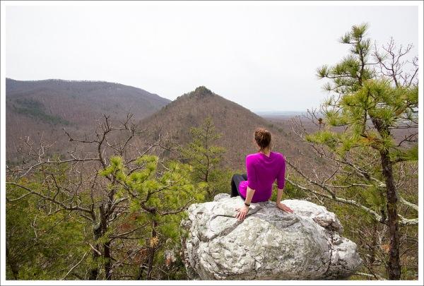 Buzzard Rock View