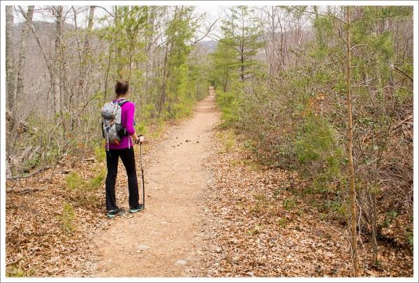 Paine Run Trail
