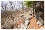 Piney Trail