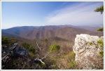 Wilderness View