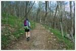 Spyrock Trail