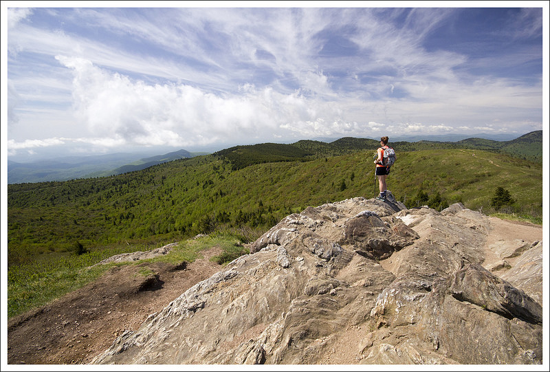 Black balsam tennent mountain nc virginia trail guide for Balsam mountain