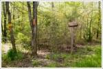 Massanutten Trail