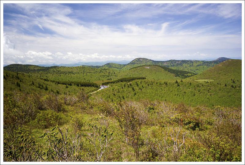 Black balsam tennent mountain virginia trail guide for Balsam mountain
