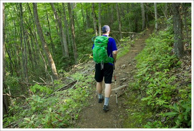 Wesser Bald Trail