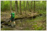 Morse Trail