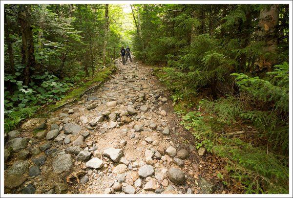 Cobbled Trail