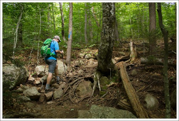 Climbing the Mt. Pemigewasset Trail