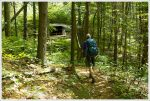 Arriving at Brown Mountain Creek Shelter