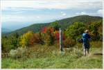 Coming Fall Color on Cole Mountain