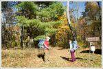 Neighbor Mountain - Jeremys Run Start