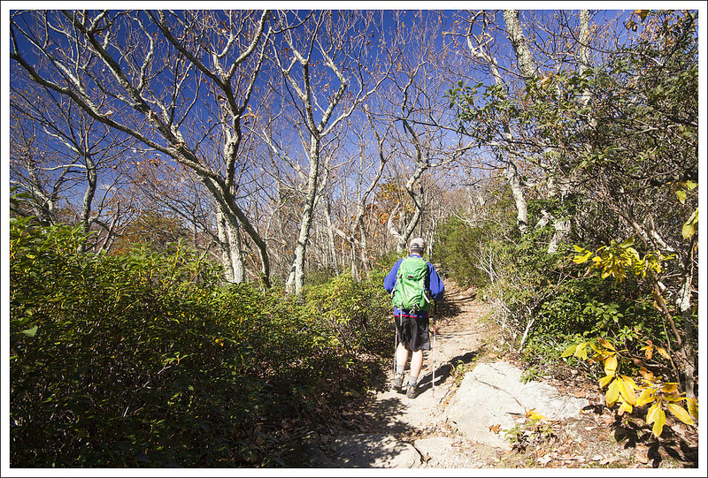 Old Rag via Berry Hollow Virginia Trail Guide