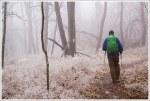 Icy Appalachian Trail