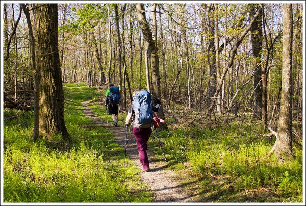 Hiking Along the AT