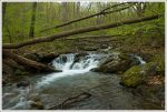 Small Cascade on North Creek