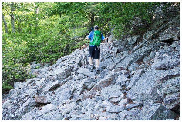 The Signal Knob Trail is Very Rocky