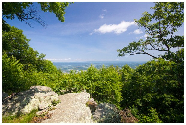 The View from Signal Knob