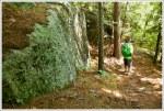 Boulders on Flume Trail