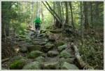 Climbing the Cobbles