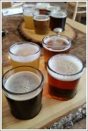 Lake Placid Beer Samples