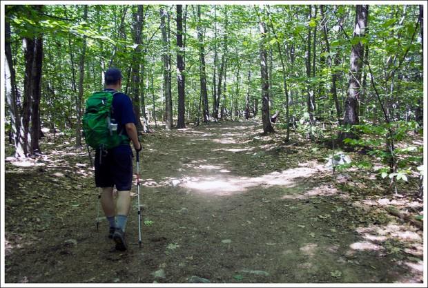 Wide Flat Mount Major Trail