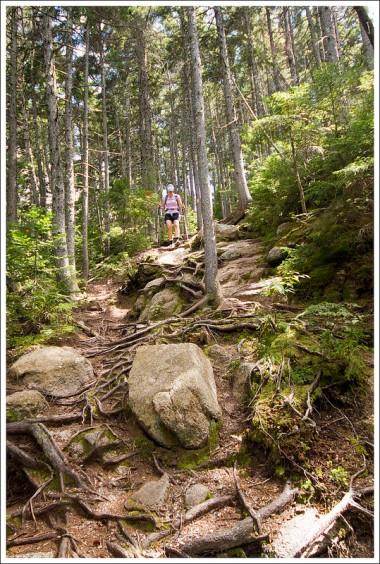Steep Descent of Hedgehog Mountain