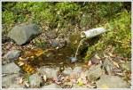 The Spring at Manassas Gap