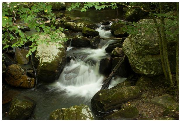 Pretty Stream Scenery