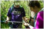 Trekking Pole Repairs