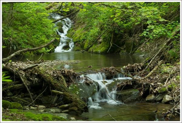 Small Waterfall on Browns Run