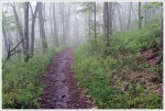 Rain on the Appalachian Trail