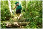 Rohrbaugh Plains Trail
