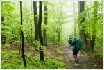 Day Five: Hiking