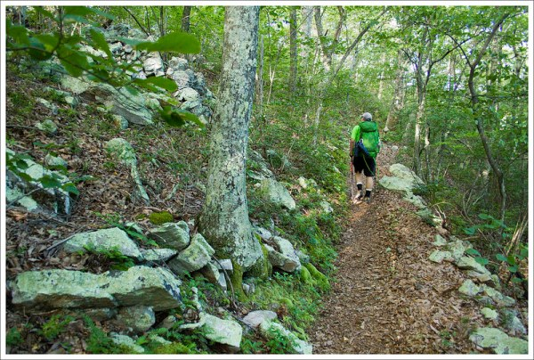 Ascent Toward Fullhardt Knob