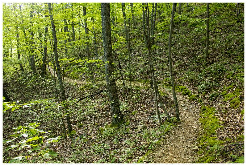 Trail Curves
