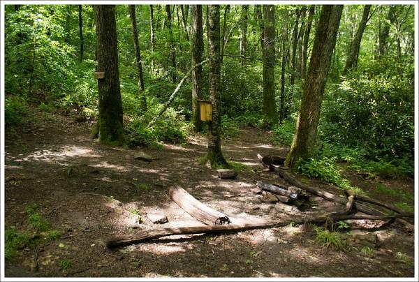 Trailside Camp